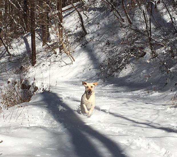 積雪の軽井沢町千ヶ滝