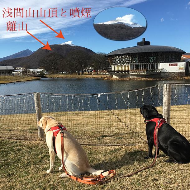 軽井沢町離山と浅間山の噴煙